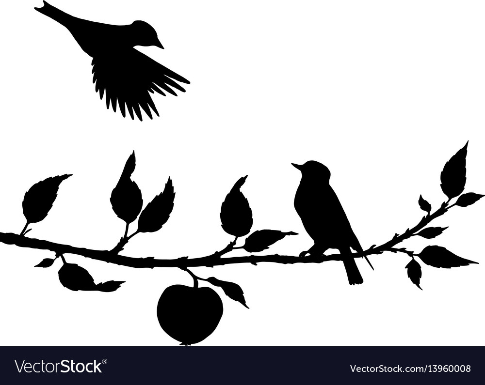 Birds at tree silhouettes