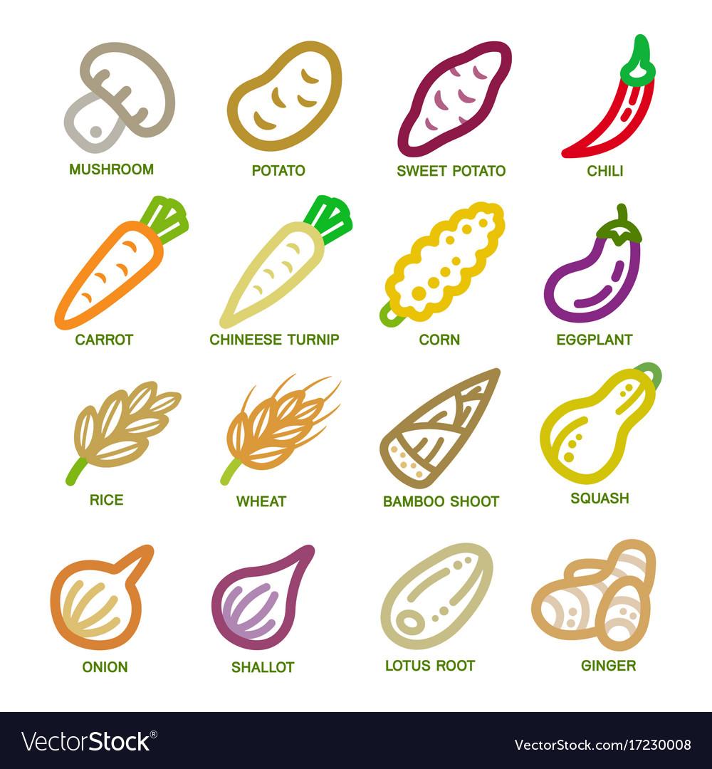 Vegetable thin line icon