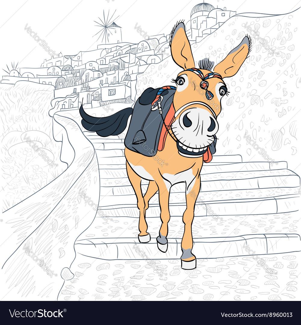 Donkey in Oia Santorini