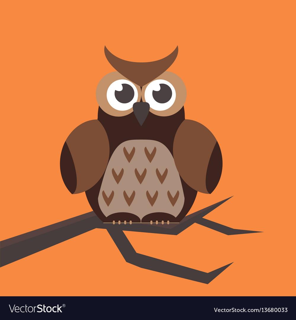Cute modern bright cartoon owl expression animal