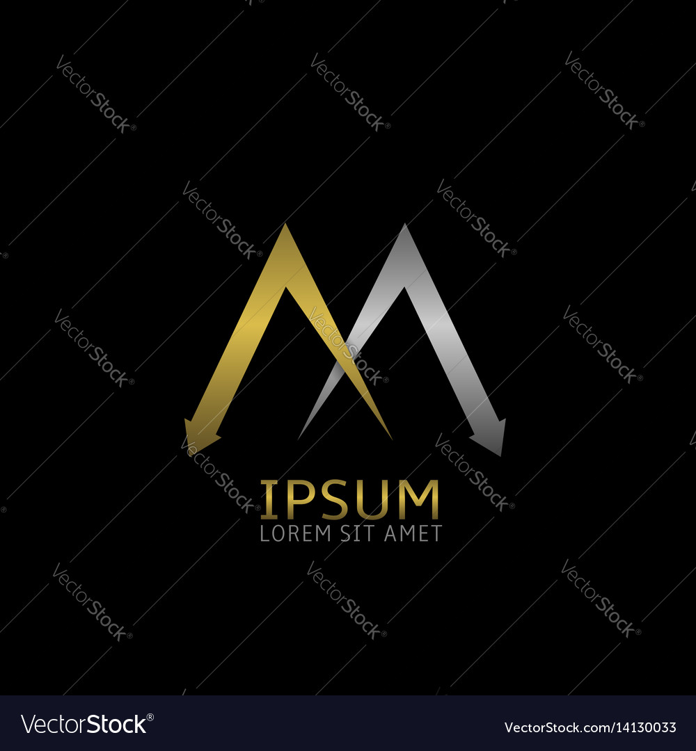 Two m letters logo vector image