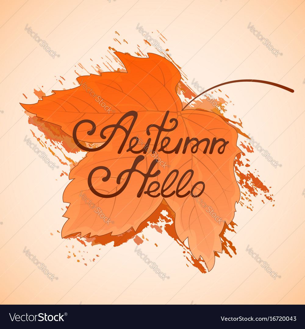Yellowed maple leaf hello autumn hand lettering