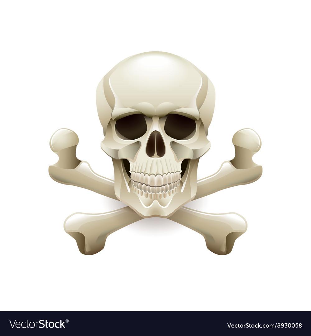 Skull crossbones isolated on white
