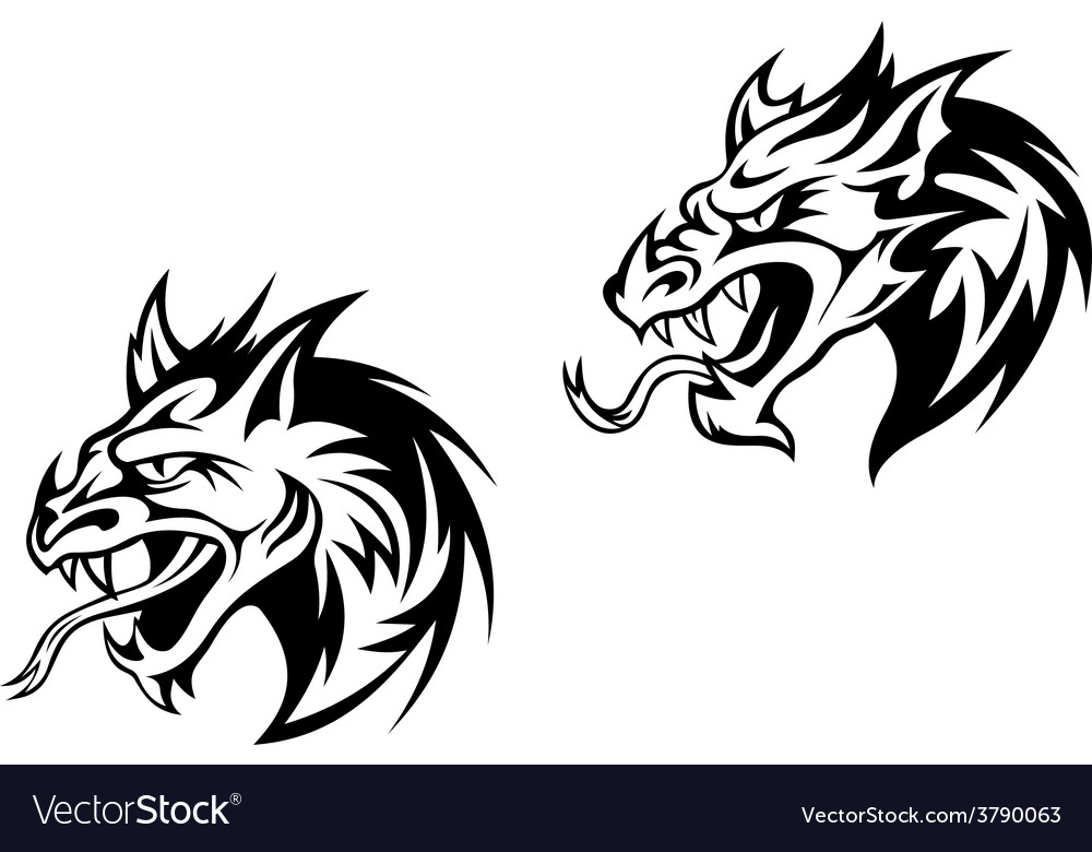 Snarling bobcat or mountain lion vector image