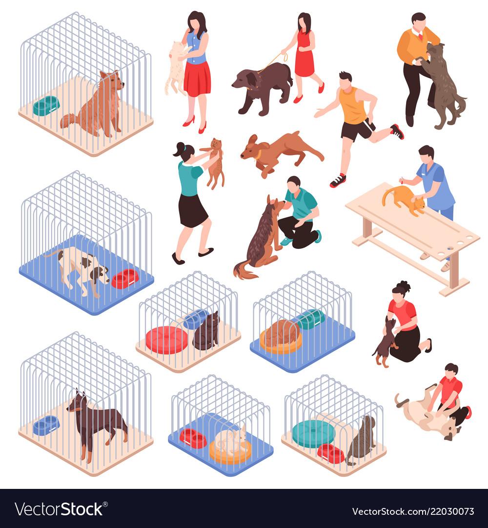 Animal shelter isometric set