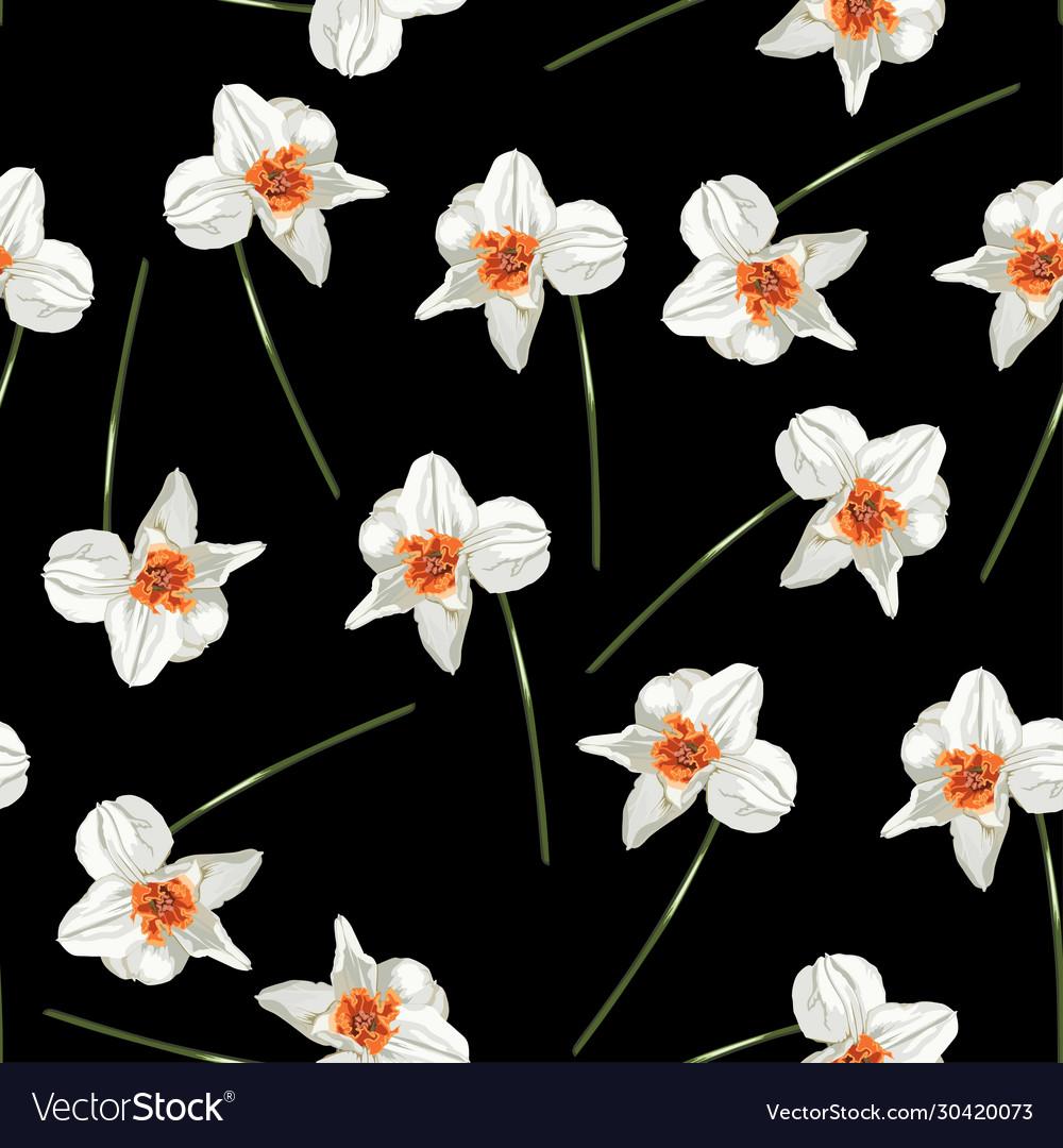 Beautiful Arrangement Spring Flowers Daffodils Vector Image