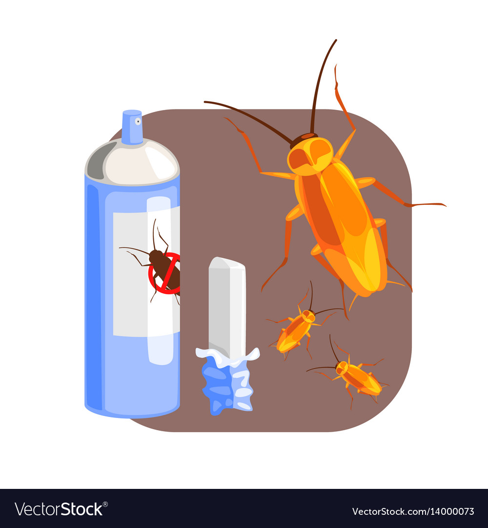 Can of cockroach insecticide and piece of chalk vector image