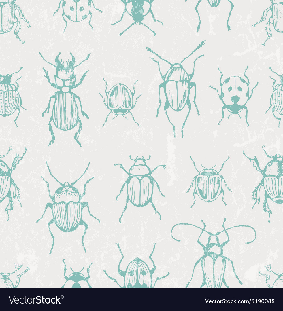 Seamless entomological pattern with bugs