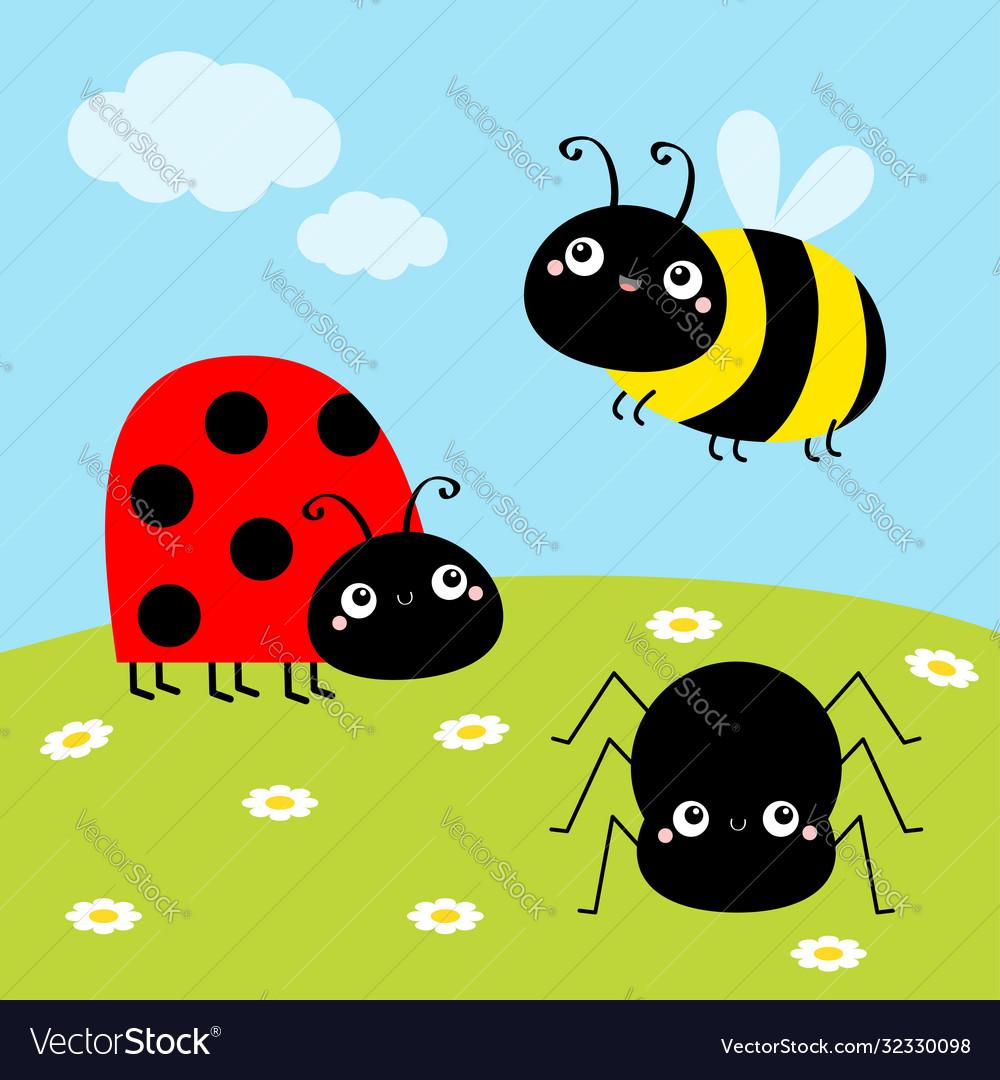 Bee bumblebee spider ladybug ladybird lady bug