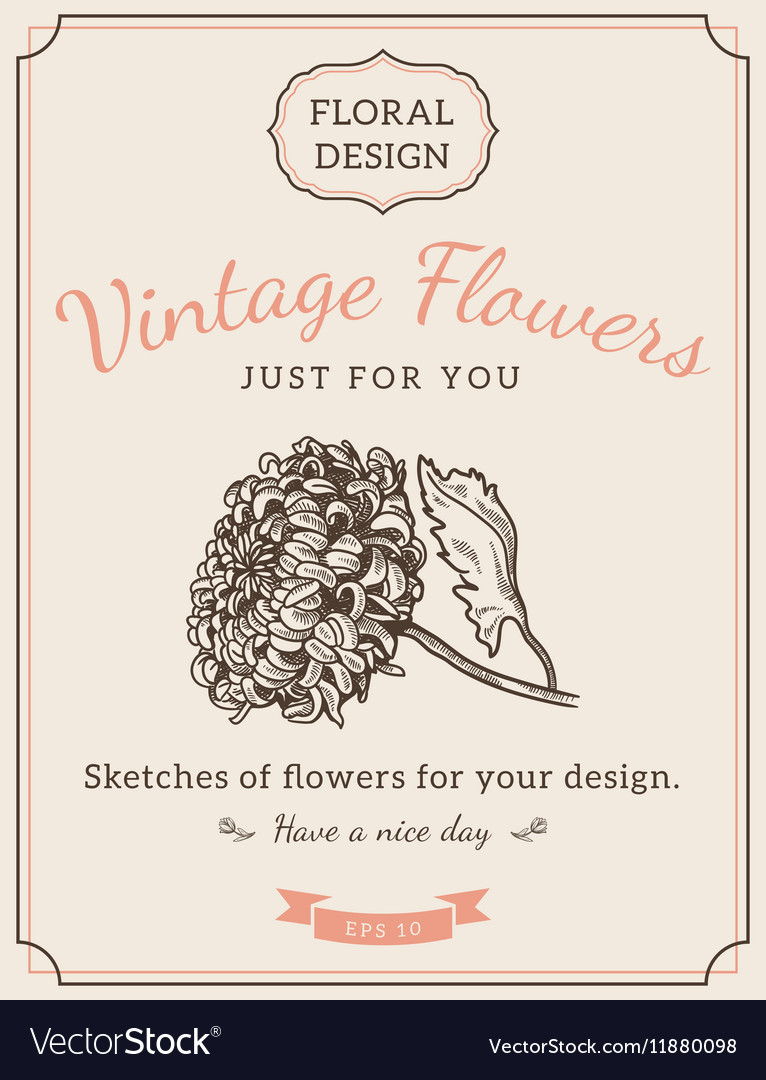 Composition of sketch flowers vector image