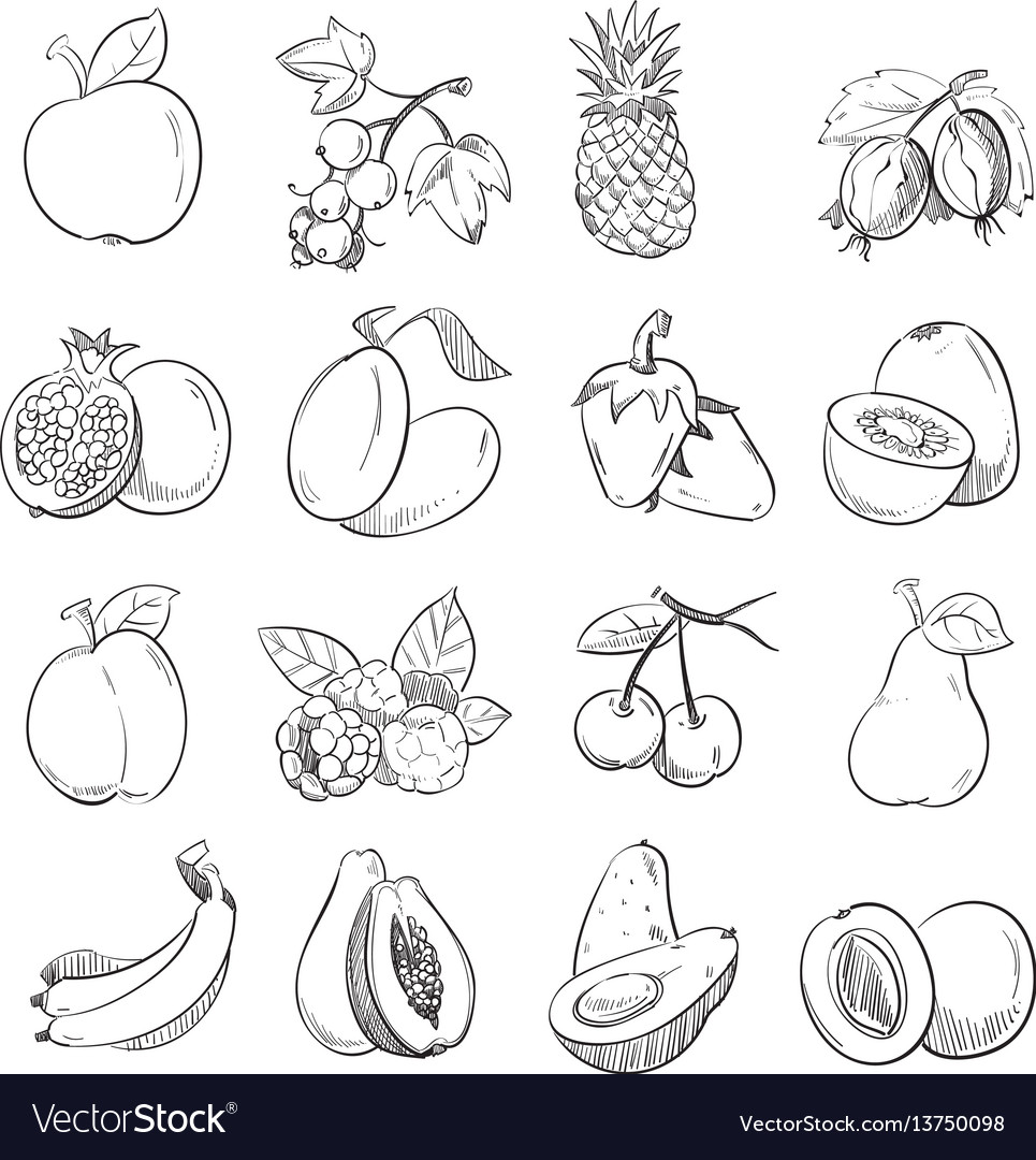 Hand drawing doodle fruits