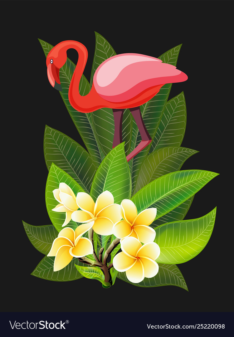 Summer design for advertising with flamingo