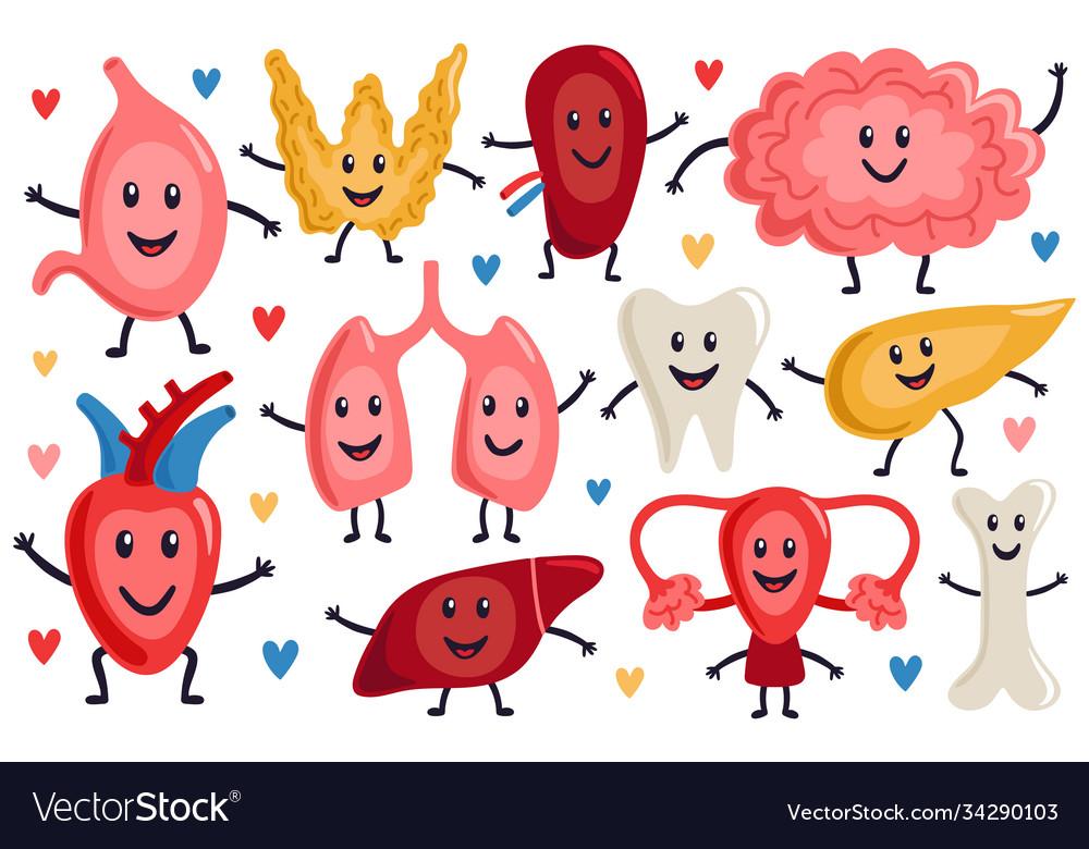 Cute internal organs healthy funny heart stomach