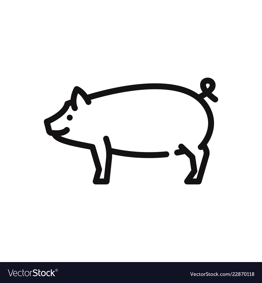 outline pig icon isolated on white background vector image  vectorstock
