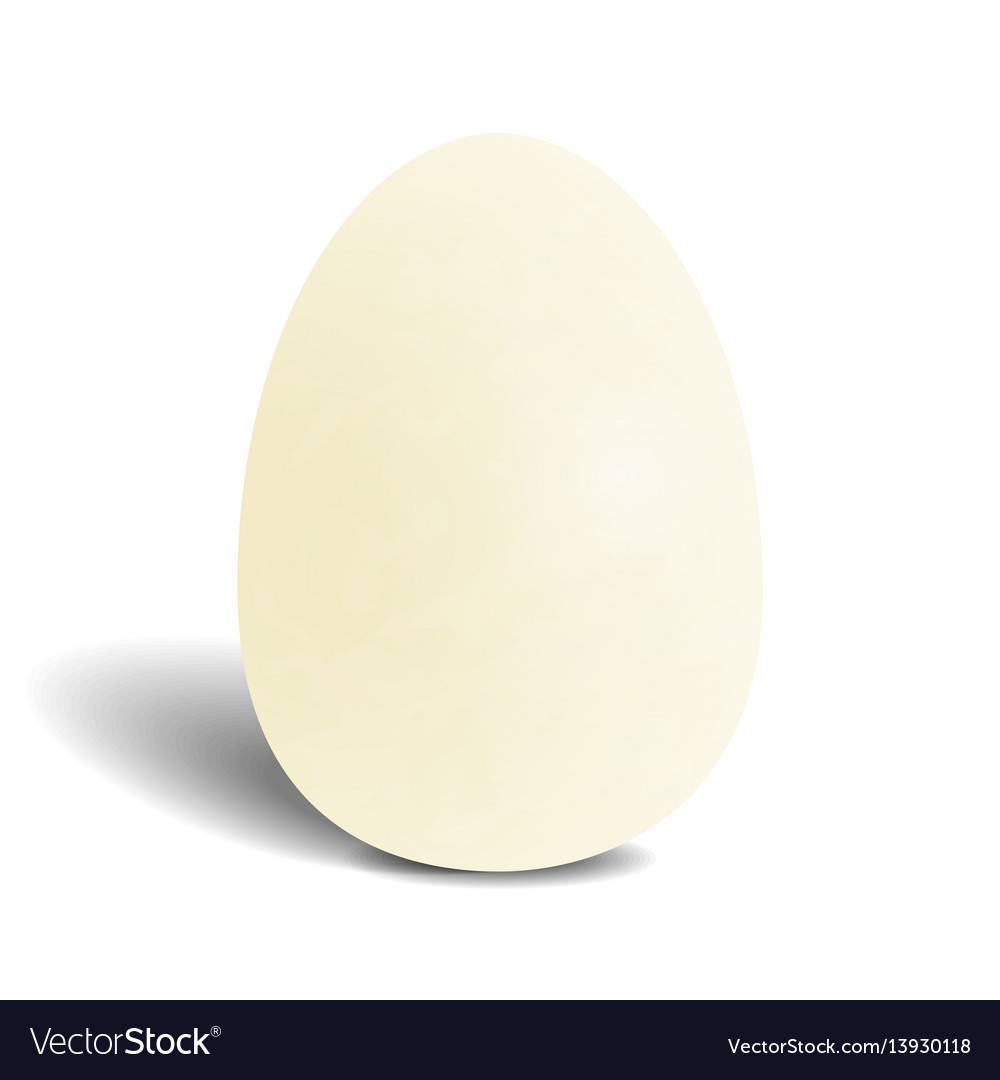 Realistic white chocolate egg isolated on white