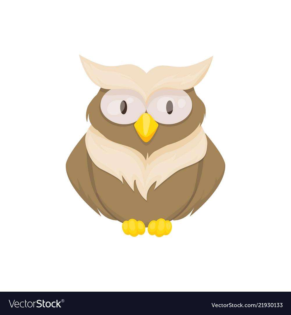 Owl bird animal character wild childish or