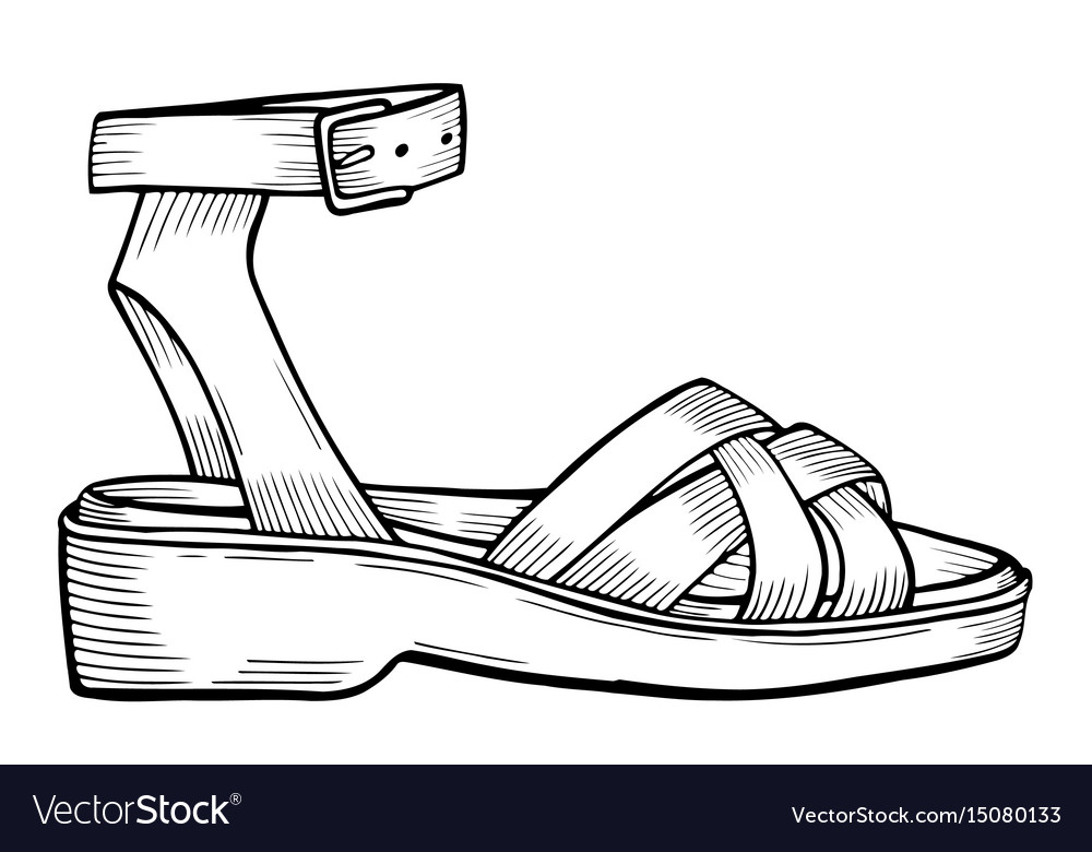 Shoes on white vector image