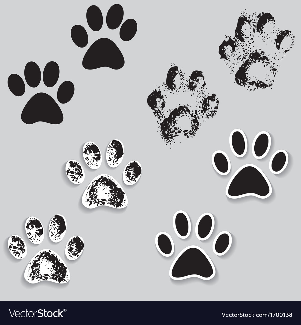 Animal cat paw track feet print icons with shadow