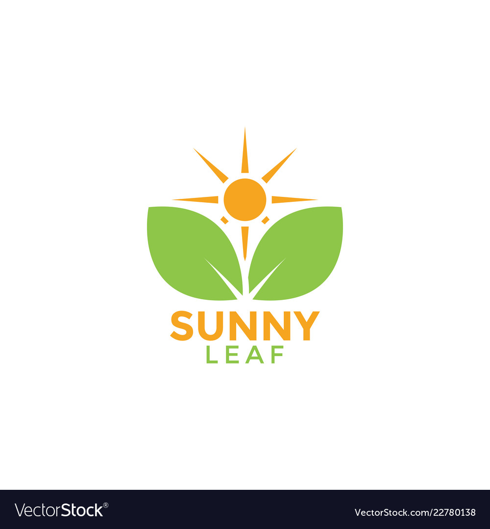 Sunny leaf graphic design template