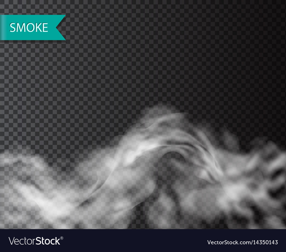 Smoke fog or cloud isolated transparentl effect vector image
