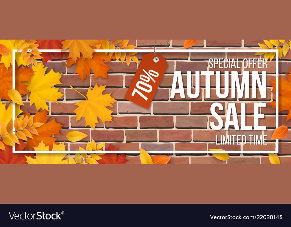 Autumn sale fallen maple leaves frame red brick
