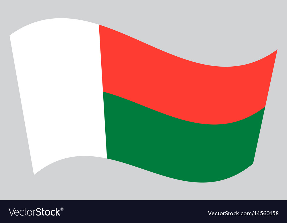 Flag of madagascar waving on gray background vector image