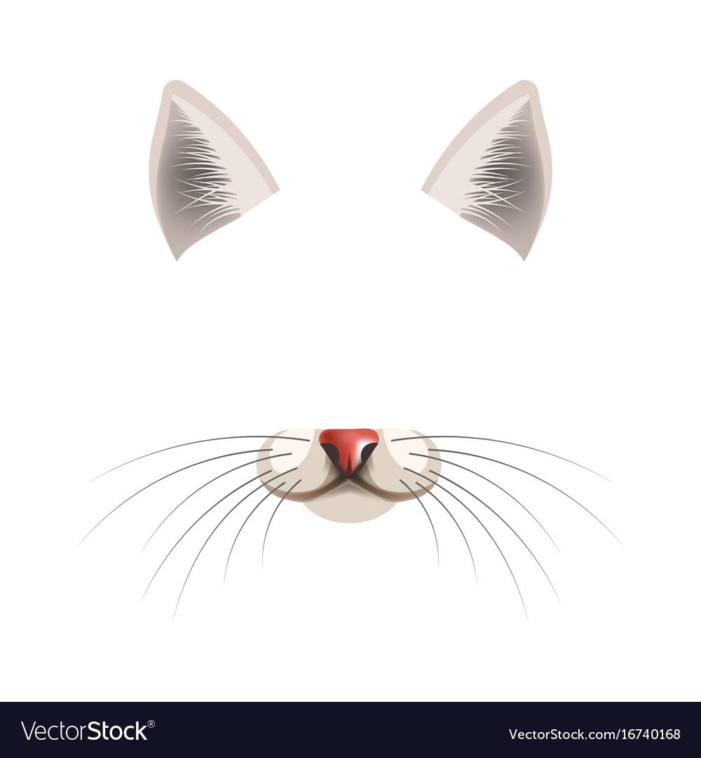 Template Of Cat Kubreforic