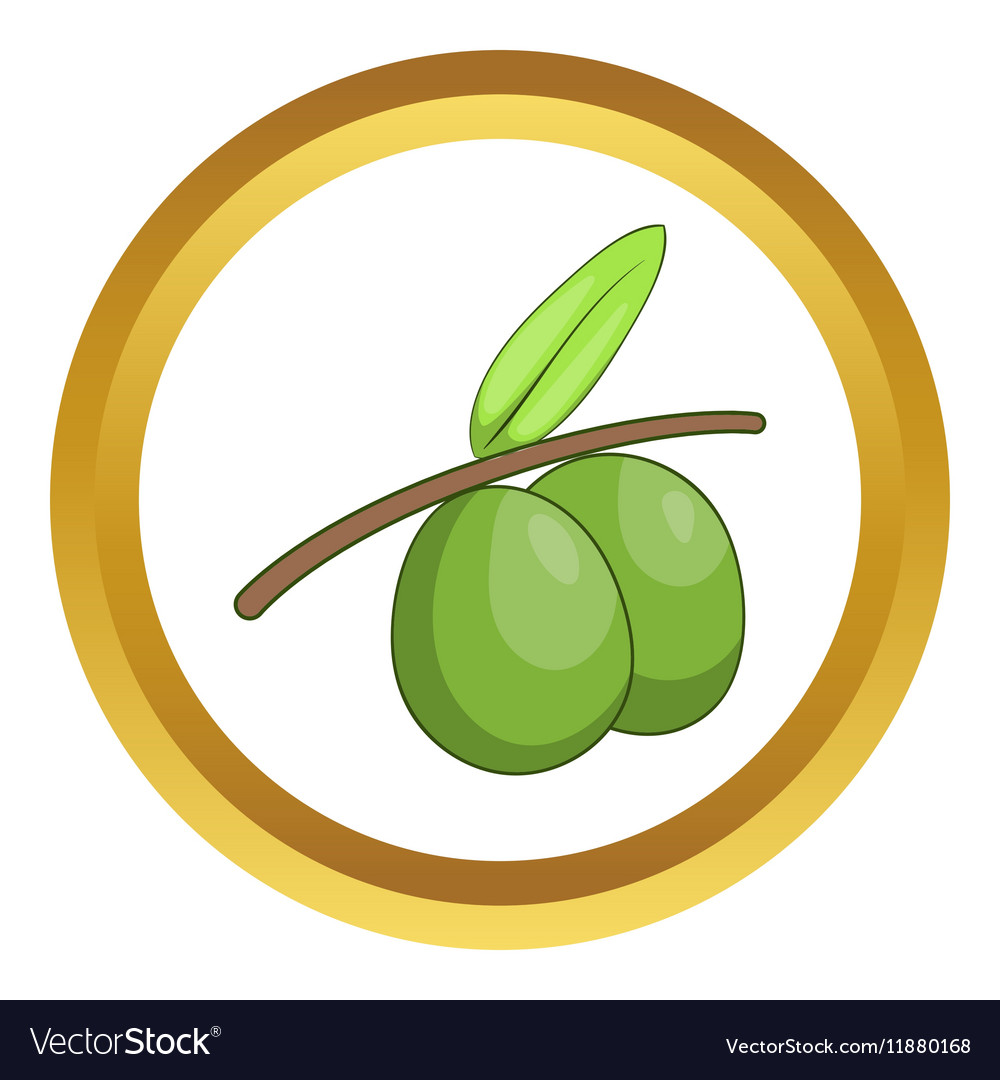 Olive branch with green olives icon
