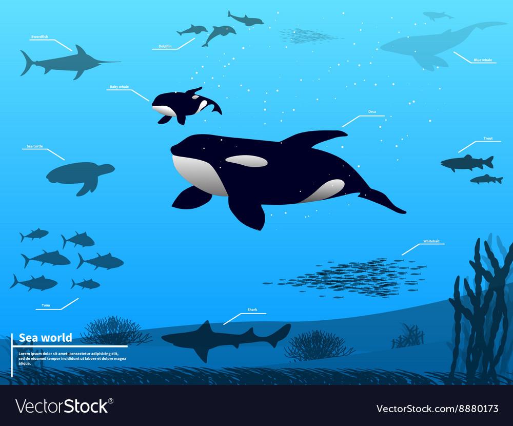 Infographics ocean sea underwater world