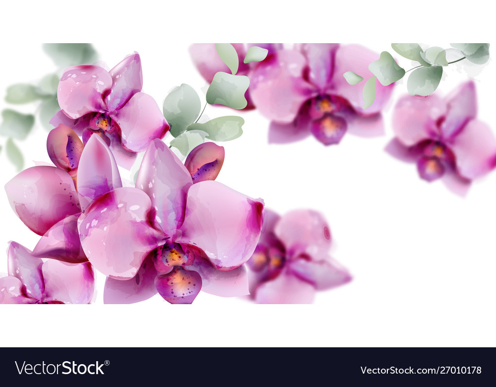Orchid flowers watercolor summer floral pattern