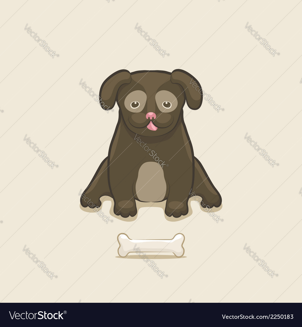 Puppy with bone vector image