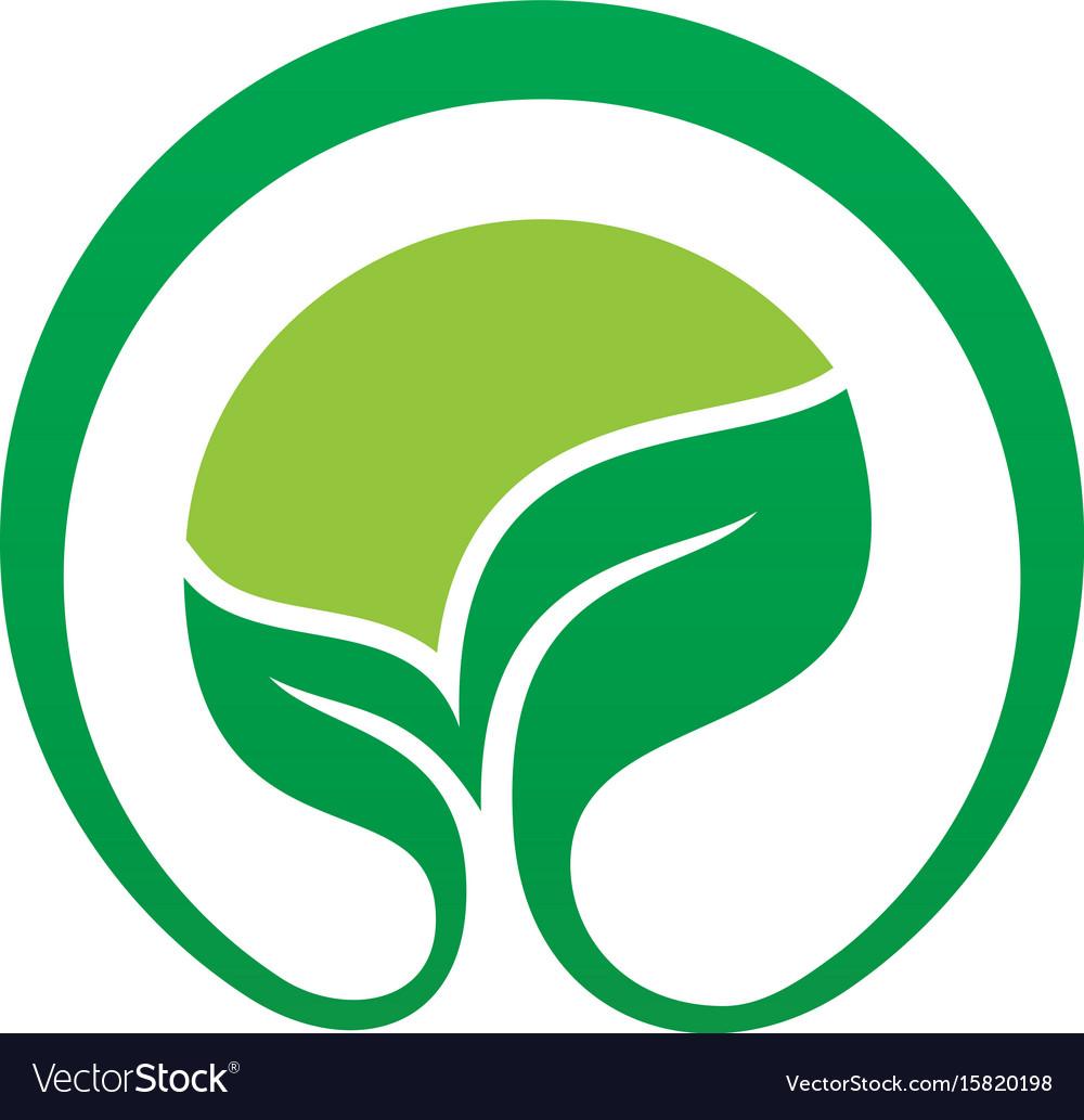 Circle leaf eco nature logo