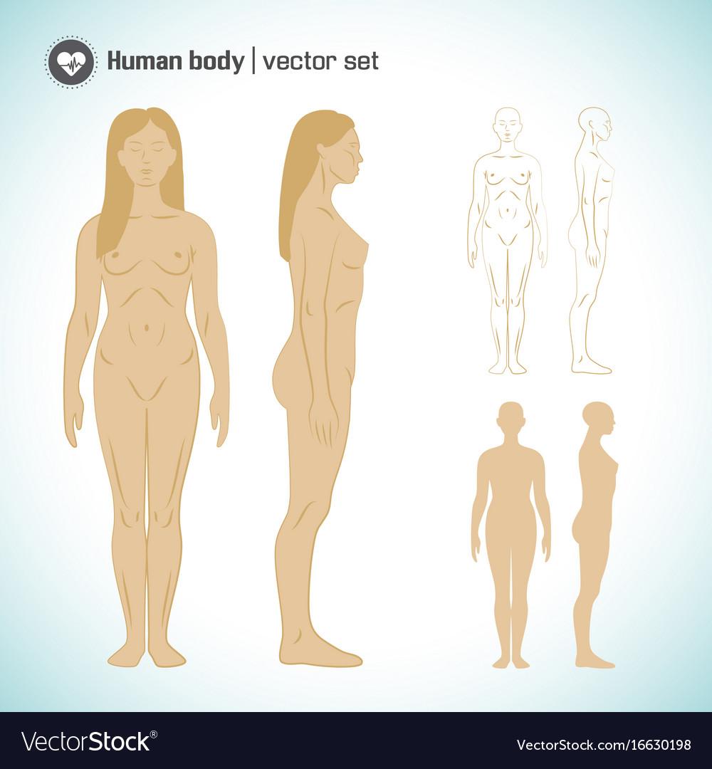 Female body set vector image