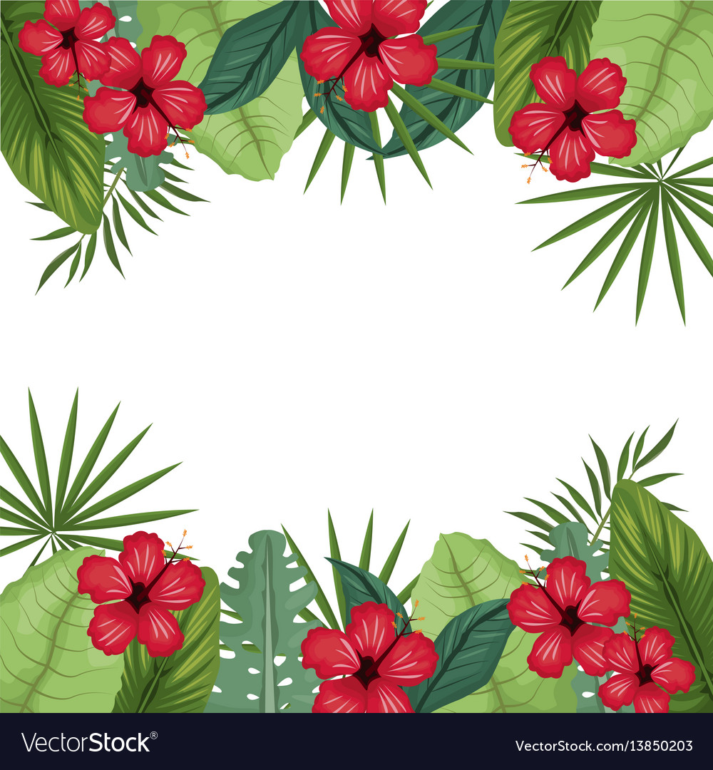 Card hibiscus with palm leaves border