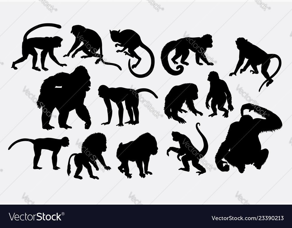 Monkey ape animal silhouette