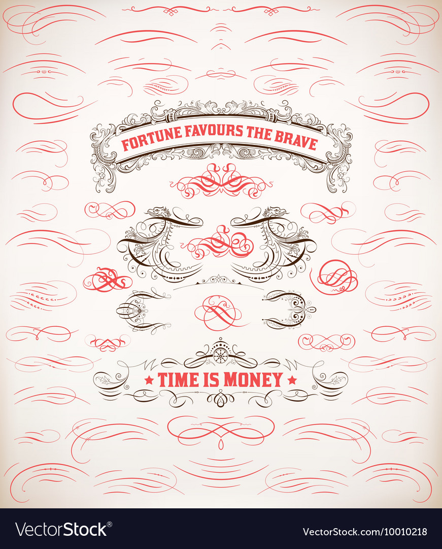 Calligraphic design resources and page decoration vector image