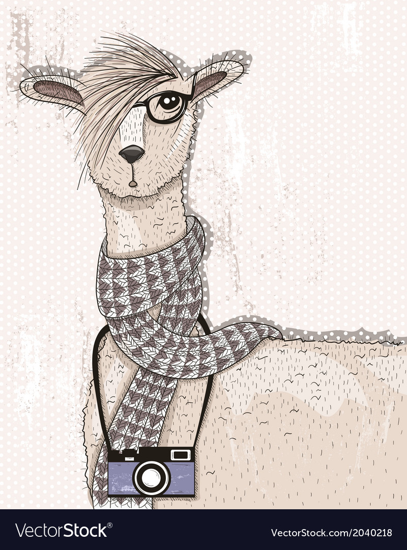 Cute hipster lama with photo camera glasses