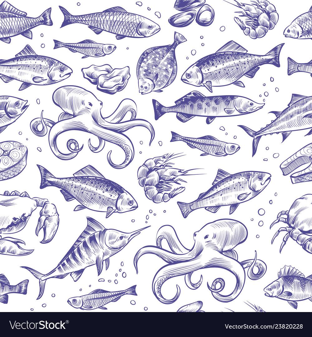 Seafood seamless pattern sketch fish hand drawn