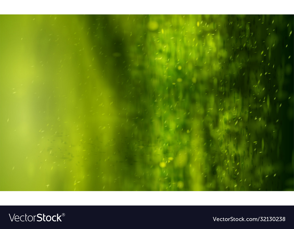 Green background with bokeh abstract warm nature