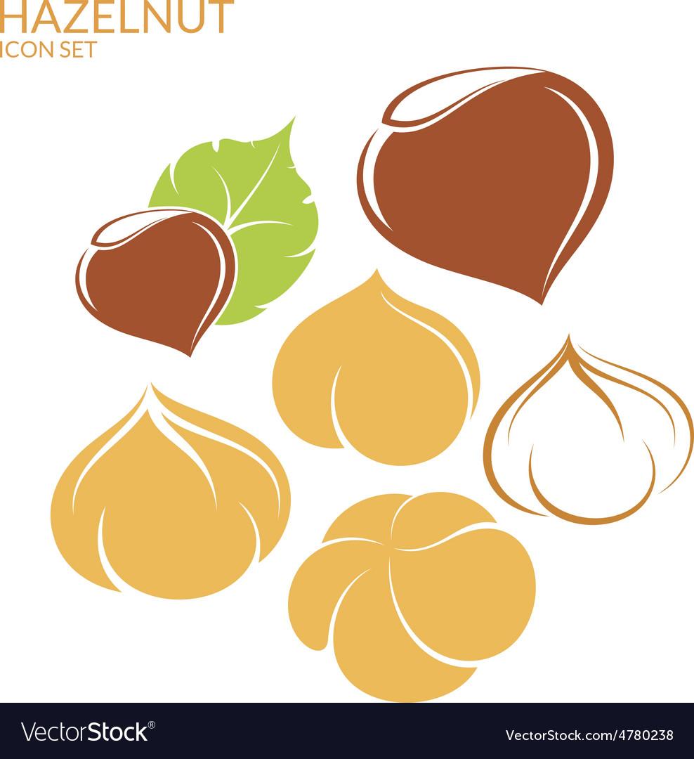Hazelnut Icon set