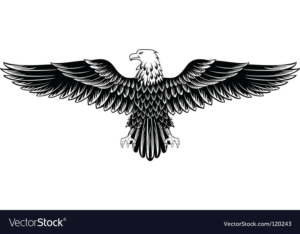 eagle royalty free vector image vectorstock rh vectorstock com free eagle vector graphics free eagle vector images