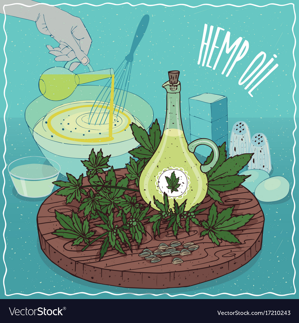 Hemp seed oil used for cooking vector image