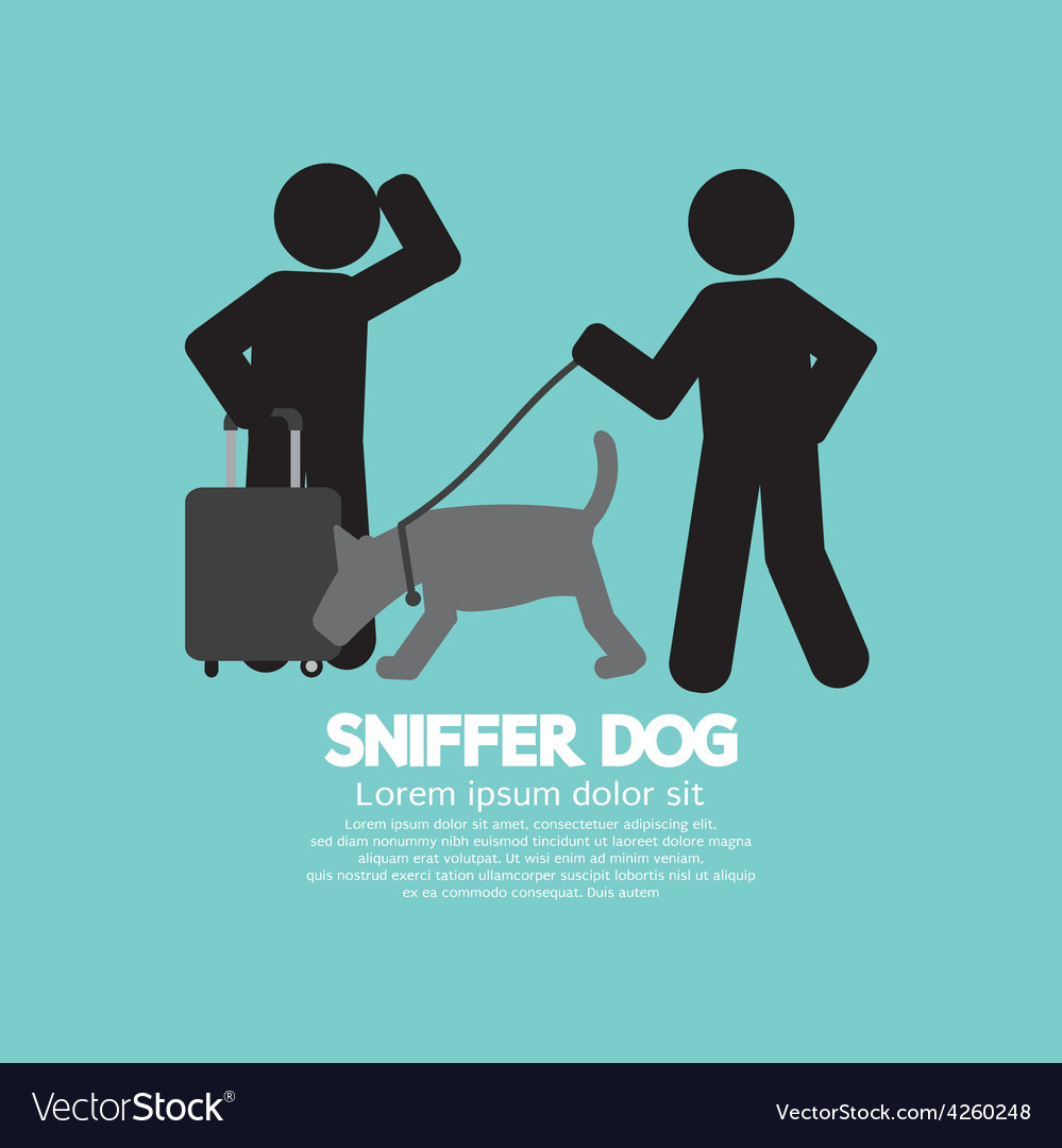 Sniffer Dog Smell At Travellers Luggage vector image