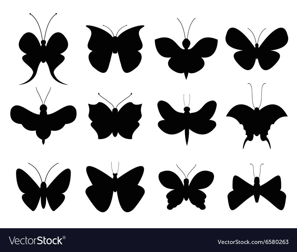 Butterflies black and white flat style