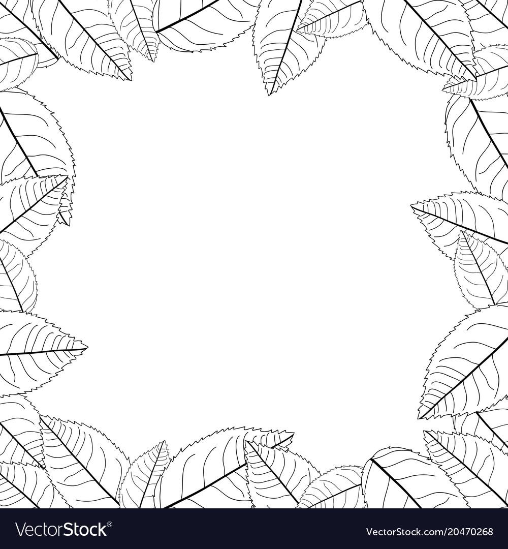 Camellia leaves outline frame border Royalty Free Vector