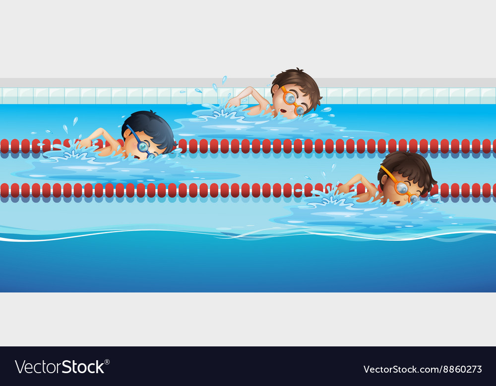 Athletes swimming in the pool vector image