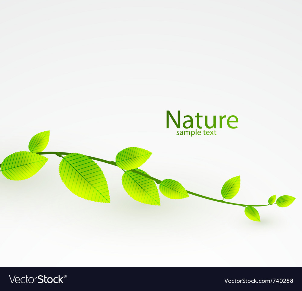 Fresh Green Leaves Abstract Background