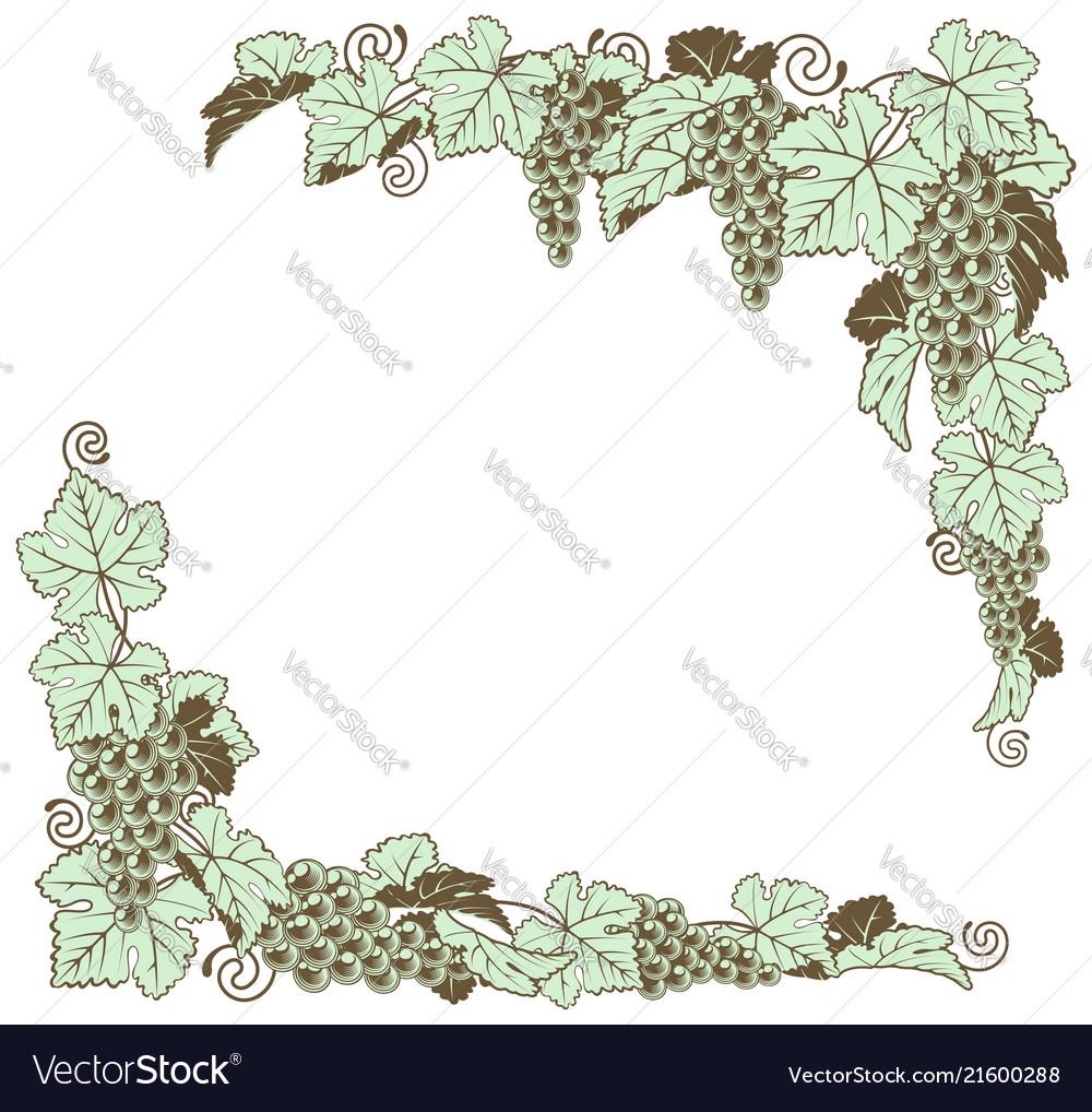 Grape vine border design