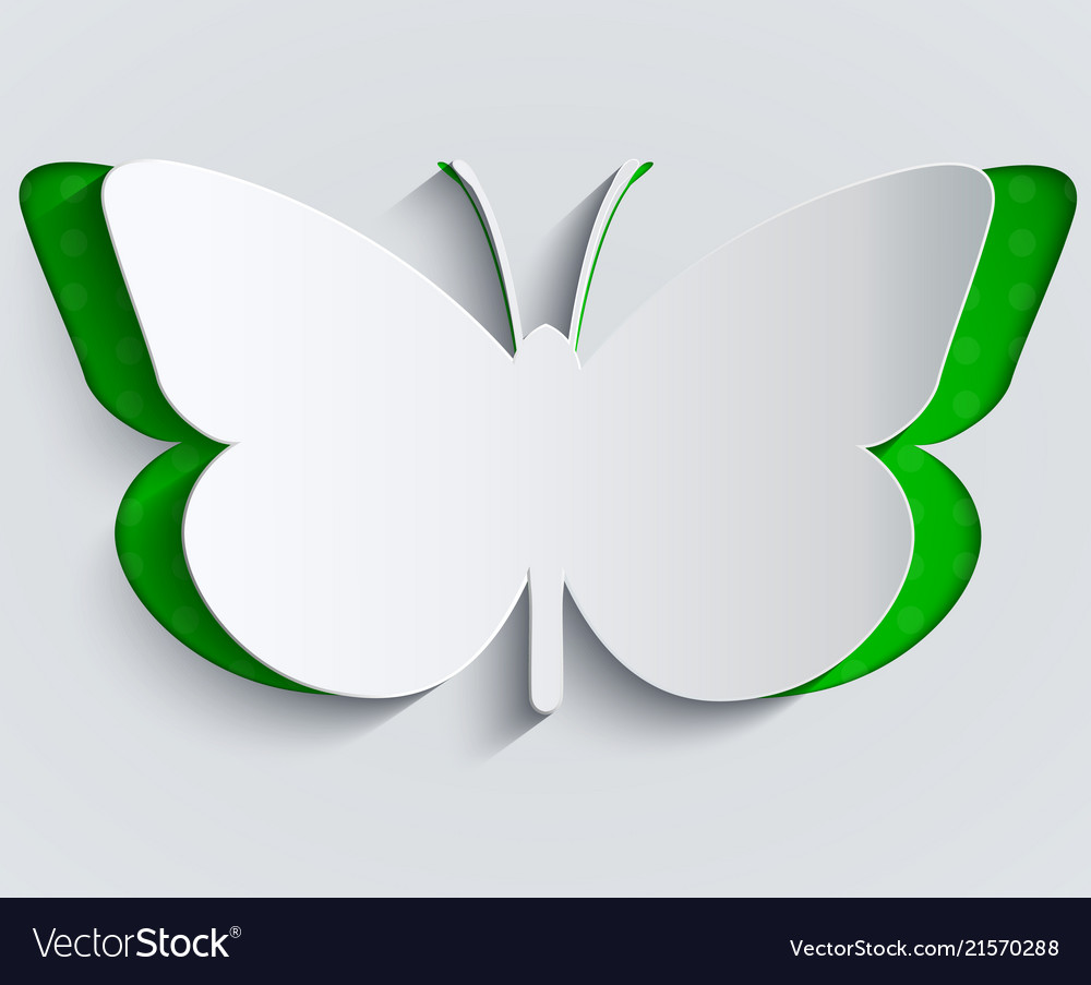 Paper butterfly decoration greeting card