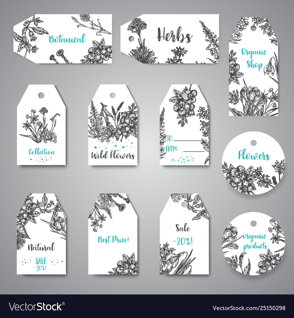 Hand drawn herbs and wild flowers tags and labels